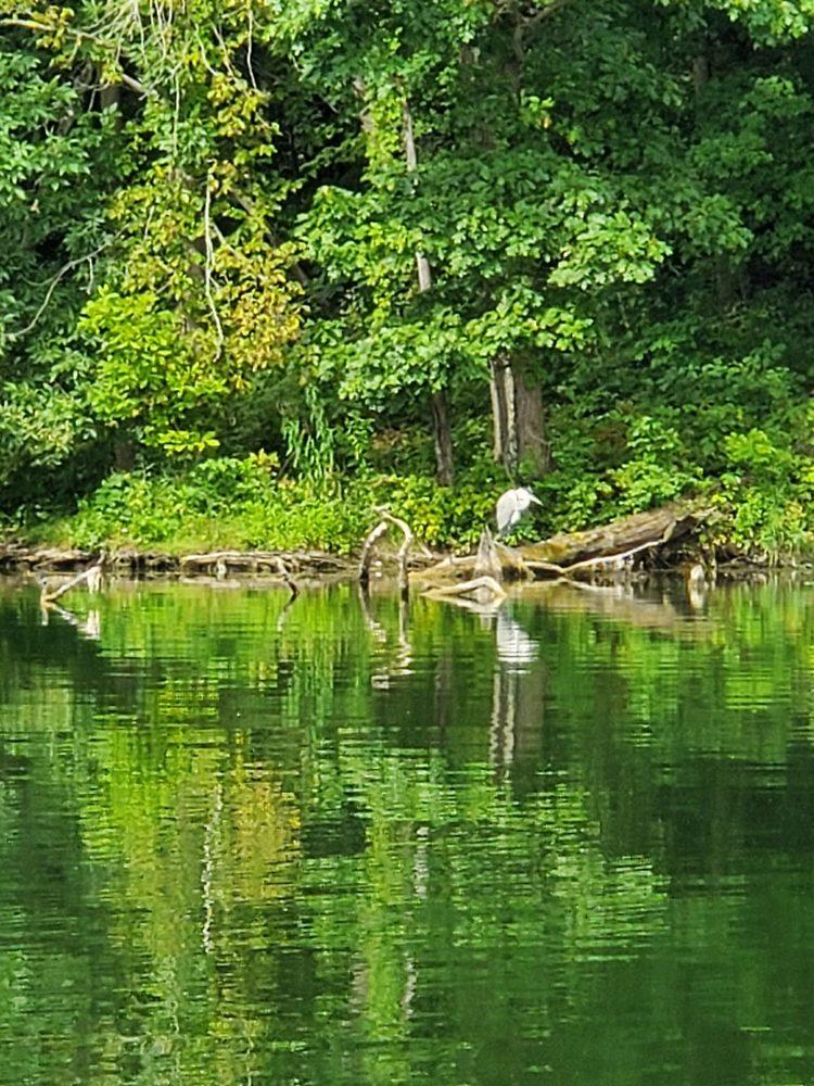 Cross Creek County Park & Maintenance: 26 Lynn Portal Rd, Avella, PA