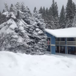 Christmas Tree Inn - 14 Reviews - Hotels - 24685 Highway 108, Mi ...