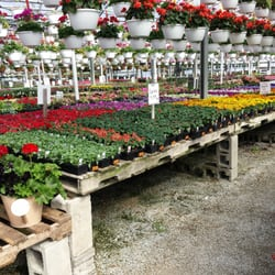 Photo Of Wells Nursery Greenhouses Greenfield In United States