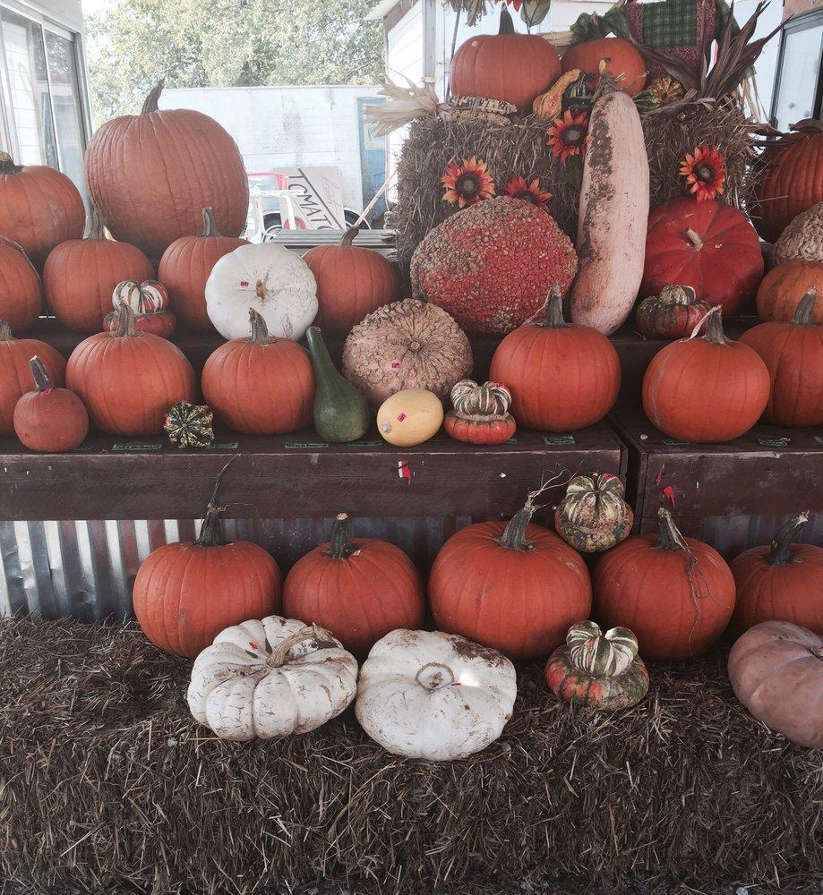 Sally's Pumpkin Patch: 967 W Princeton Dr, Princeton, TX