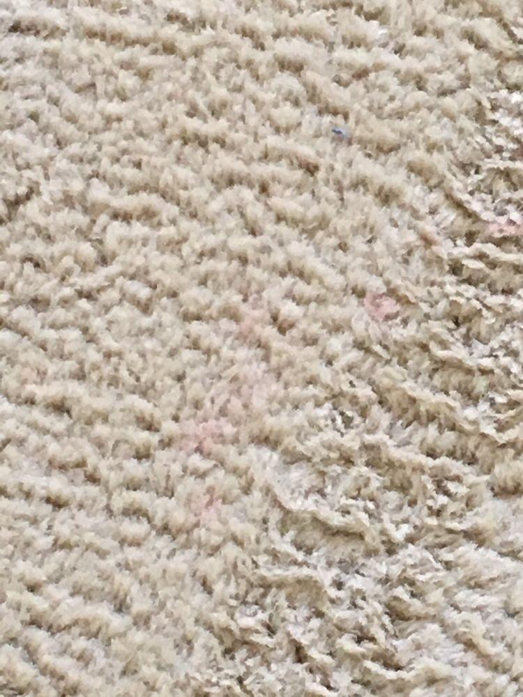 Johnson Carpet Cleaning