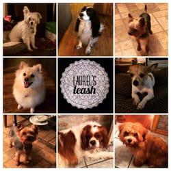 Laurel's Leash Dog Boarding & Training - 84 Photos & 30