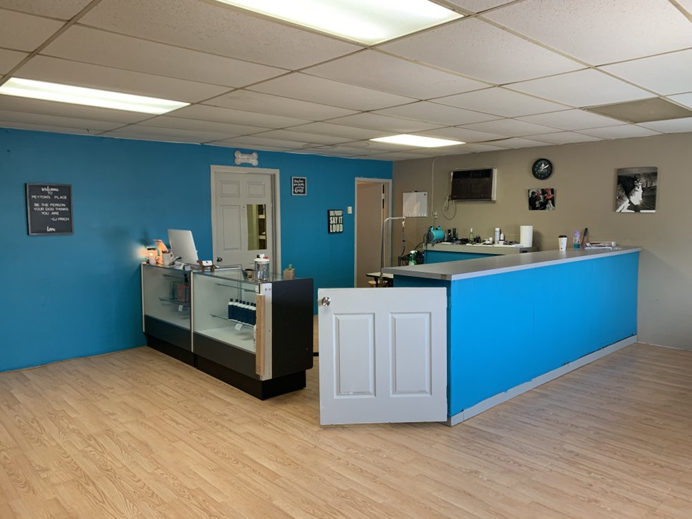 Peyton's Place Dog Grooming and Daycare: 303 N Carbon St, Marion, IL