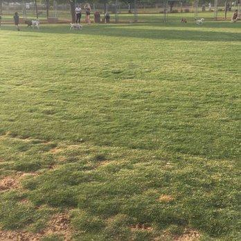 Scottsdale Chaparral Dog Park