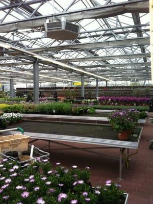 fleur garten - gardeners - an der grenzpappel 7, bremen, germany, Design ideen