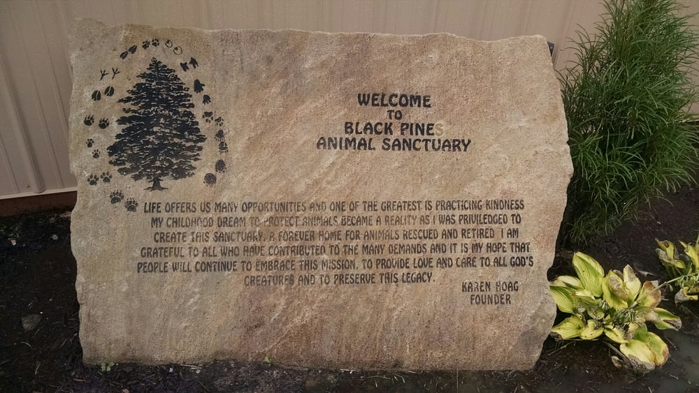 Black Pine Animal Sanctuary: 1426 W 300th N, Albion, IN