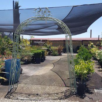 Marvelous Foto De Garden Accents   Gilroy, CA, Estados Unidos