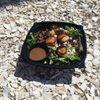 Gazebo Grill and Sushi Bar: 325 9th St, Beach Haven, NJ