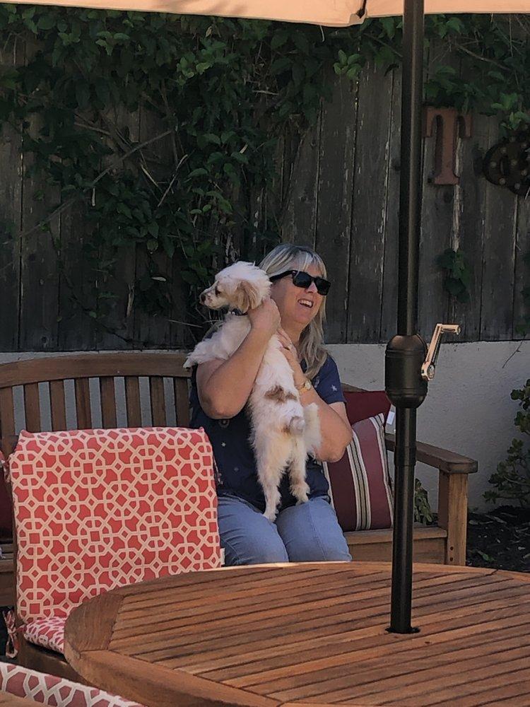 Pet Angels In Santa Barbara