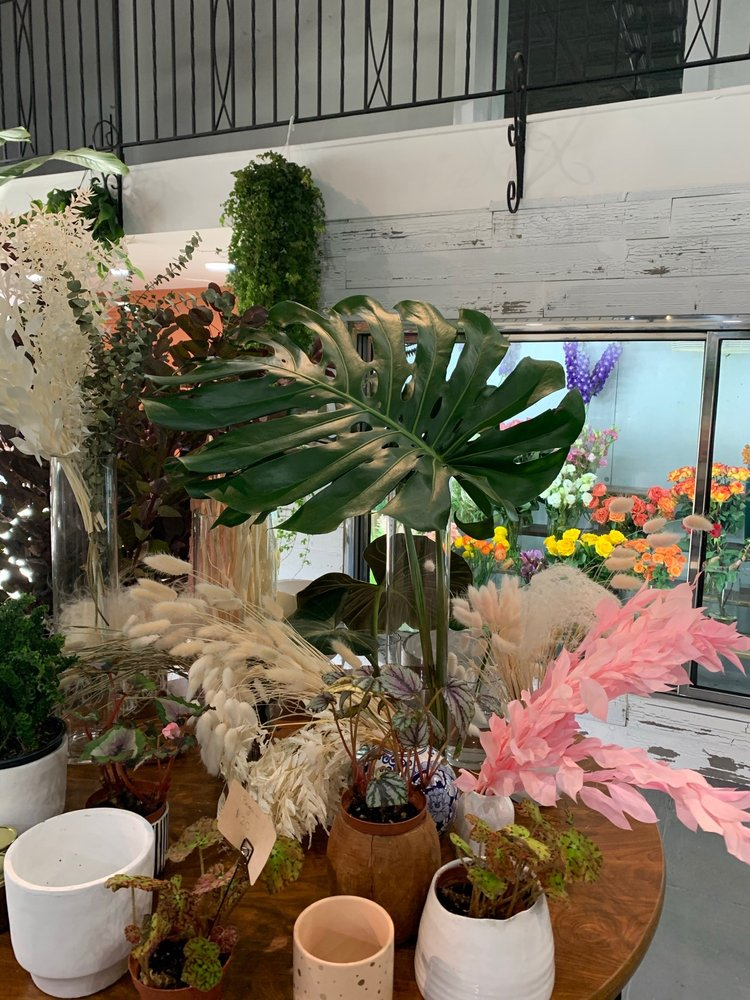 Buds & Blooms: 19 Grand Ave, Englewood, NJ