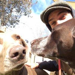 dog boarding burlington vt