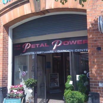 Petal power florists 31 regent street newtownards for Home decor newtownards