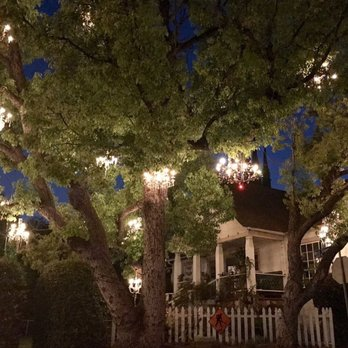 Chandelier Tree - 518 Photos & 166 Reviews - Local Flavor - 2811 W ...