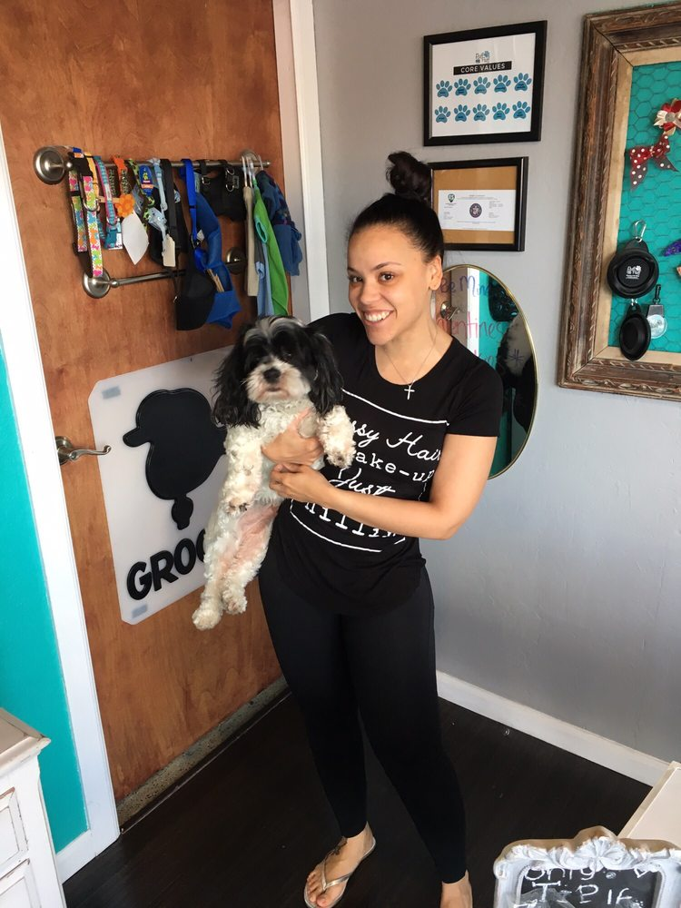 Puff & Fluff Grooming and Pet Sitting - Uptown