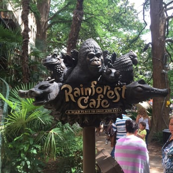 Rainforest Cafe 188 Photos Amp 270 Reviews American