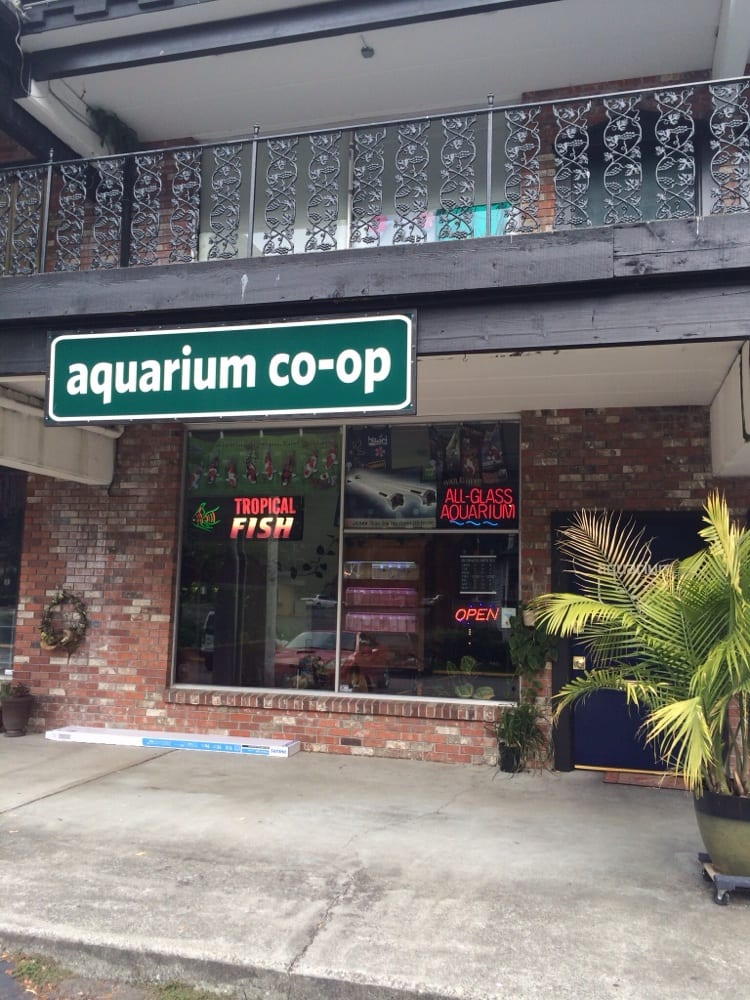 Photos For Aquarium Co Op Yelp