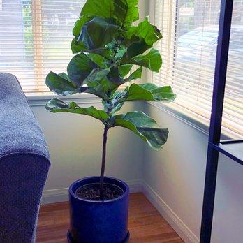 Photo Of Sunset Nursery Los Angeles Ca United States A Wonderful Planter