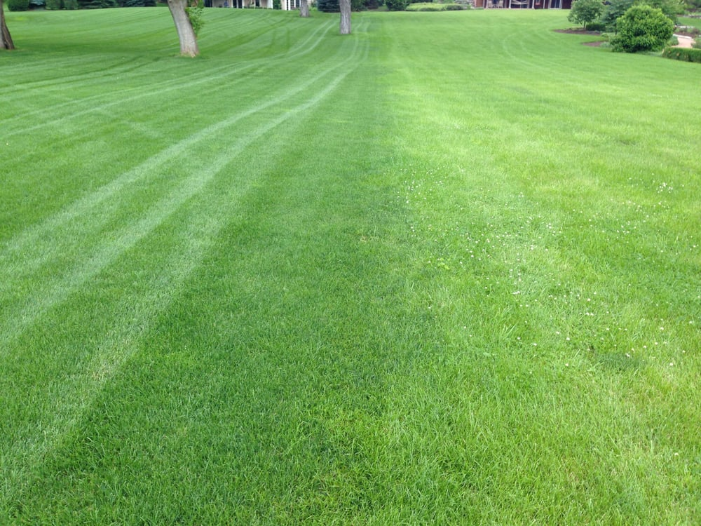 Weiss Lawn Care Inc: Winfield, IL