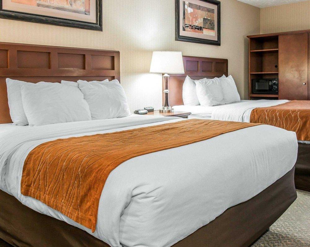comfort inn traverse city 22 photos 21 reviews hotels 460