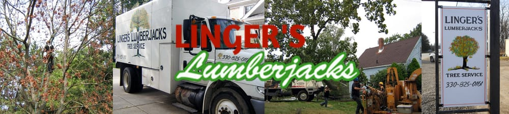 Linger's Lumberjacks: 3744 Woodglen Ave, Norton, OH