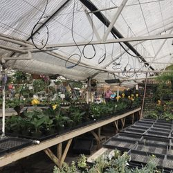 Photo Of Bell S Nursery Gifts Anchorage Ak United States