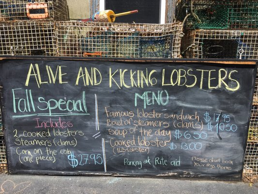 Alive & Kicking Lobsters - 2019 All You Need to Know BEFORE