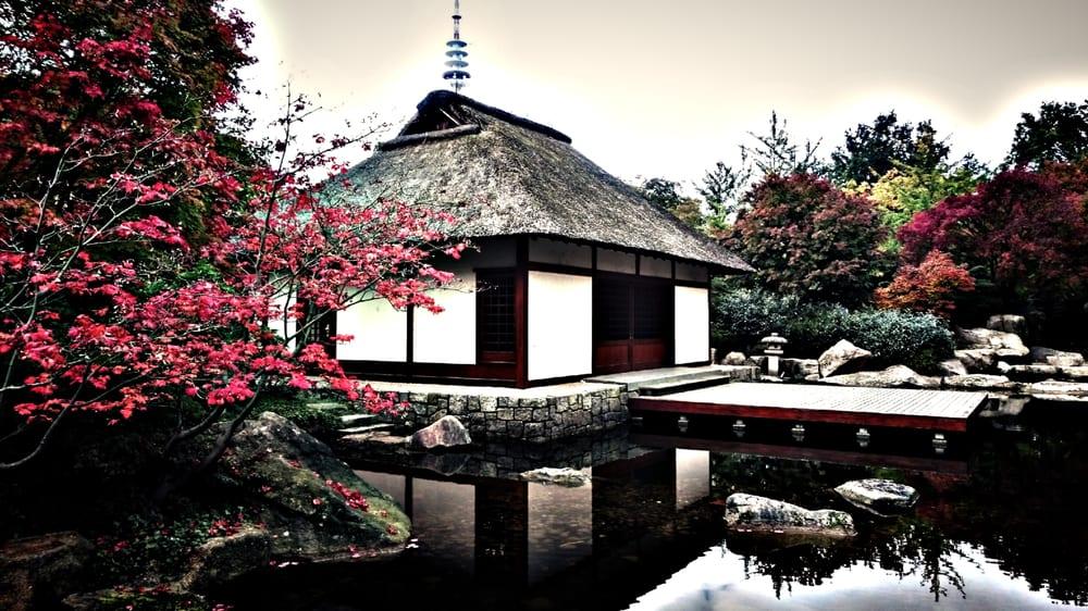 japanischer garten teehaus 160 foto e 17 recensioni parchi planten un blomen st pauli. Black Bedroom Furniture Sets. Home Design Ideas