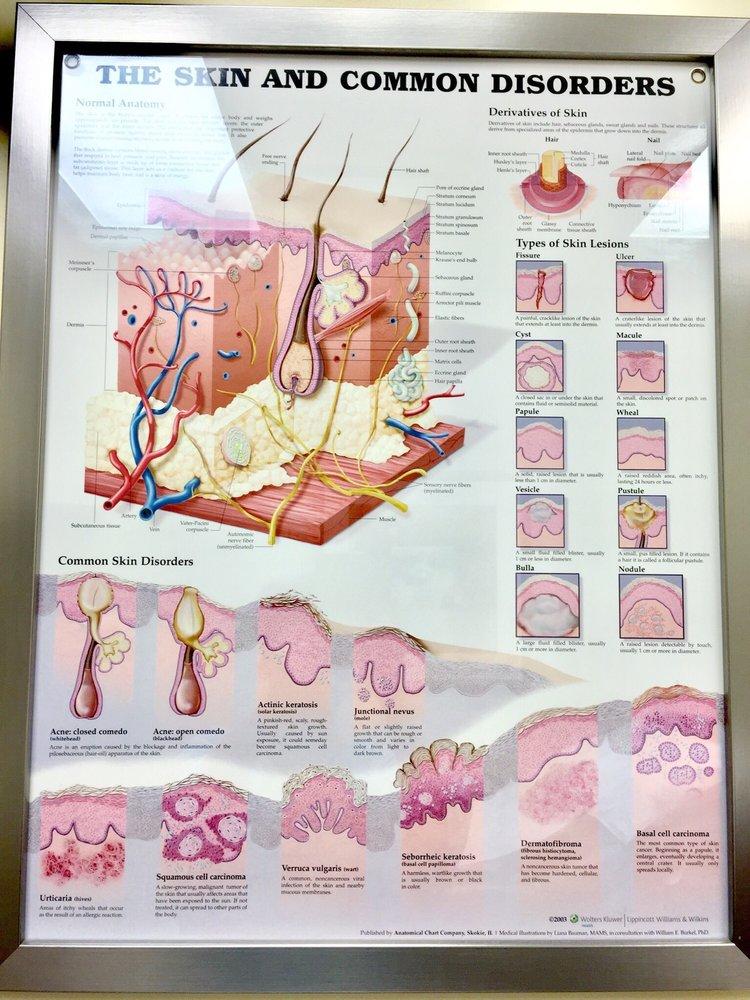 Northwestern Medical Group - Dermatology - 70 Reviews