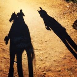 Ocean Park Ranch Closed 28 Photos 17 Reviews Horseback