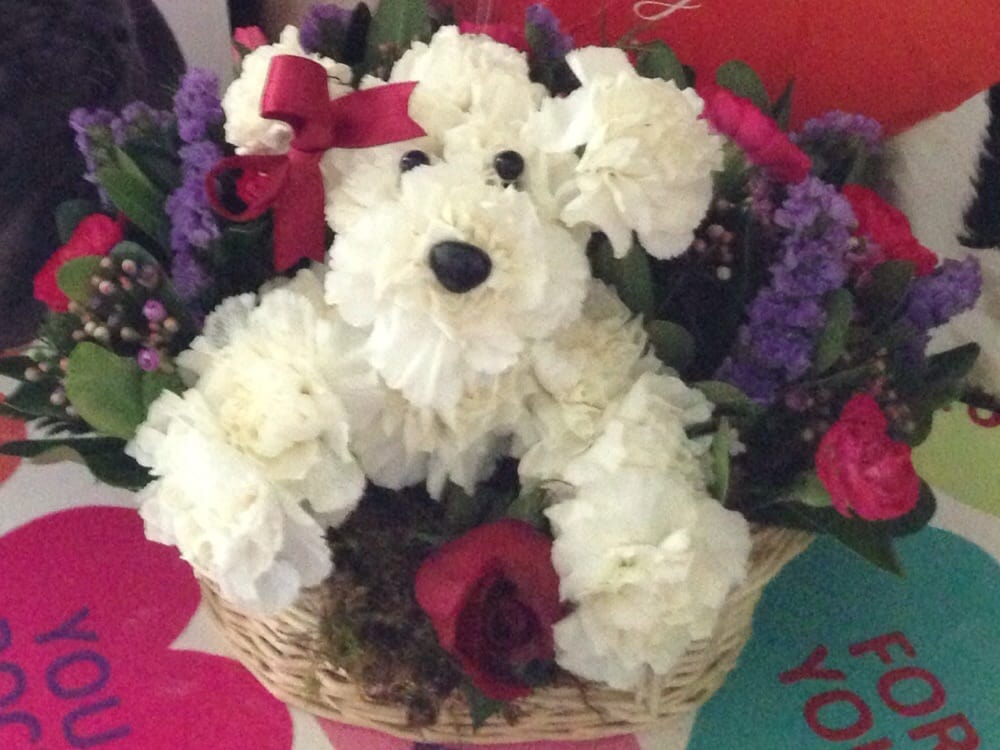 Love Pup Bouquet - Yelp