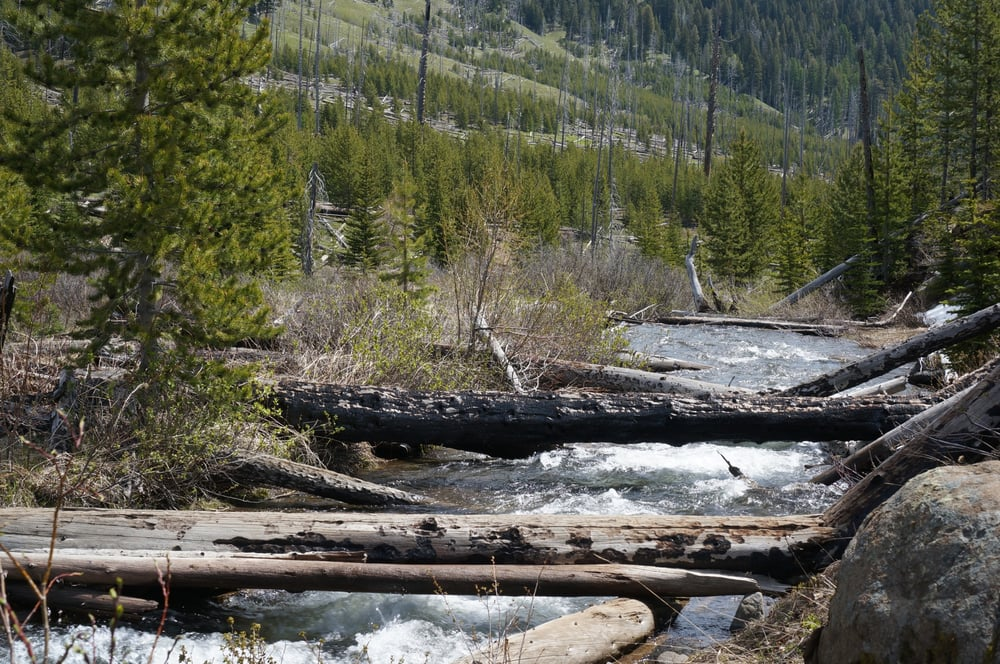 Eagle Cap Wilderness: Lostine, OR