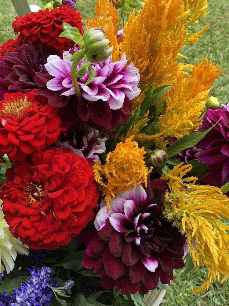 Alice's Flower Garden: 1536 E Manchester Rd, Manchester Center, VT