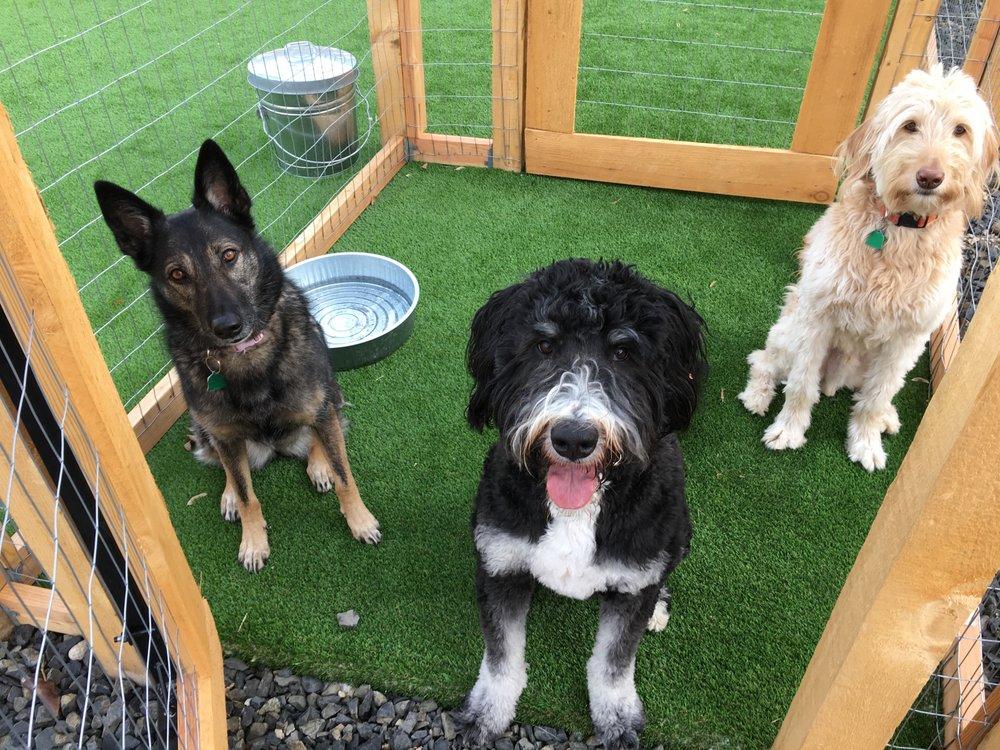 Dog Retreat Center: 4605 W Chinden Blvd, Boise, ID