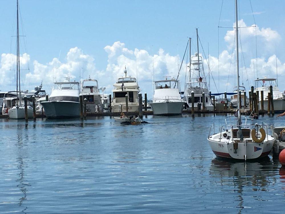 Annual Schooner Wharf Minimal Regatta: 202 William St, Key West, FL