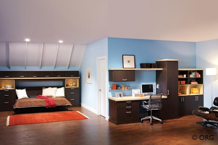 Home Office With A Wall Bed From Carson Closets