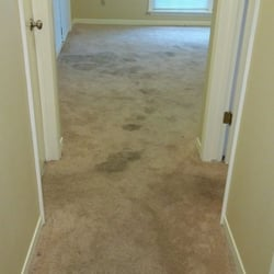 Photo Of Organic Carpet Care Austin Tx United States Cedar Park