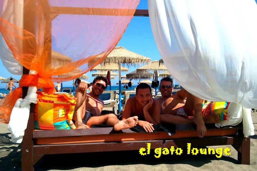 El Gato Lounge En Paseo Maritimo De Torremolinos Un Bar Y