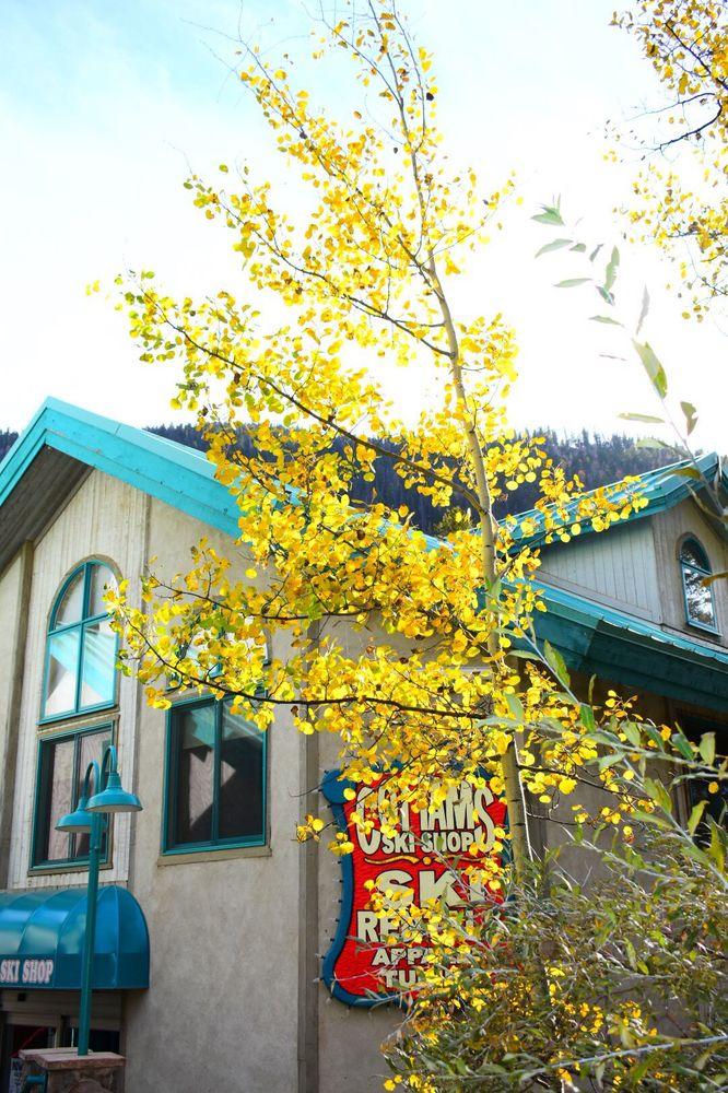 Alpine Village Suites: 100 Thunderbird Rd, Taos Ski Valley, NM
