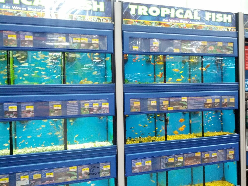 They sell tropical fish here yelp for Fish finder walmart
