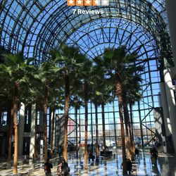 photo of winter garden new york ny united states beautiful indoor outdoor - Winter Garden Nyc