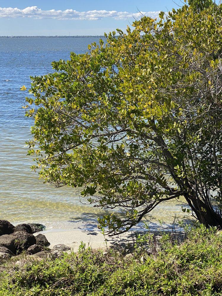 Manatee Sanctuary Park: 701 Thurm Blvd, Cape Canaveral, FL
