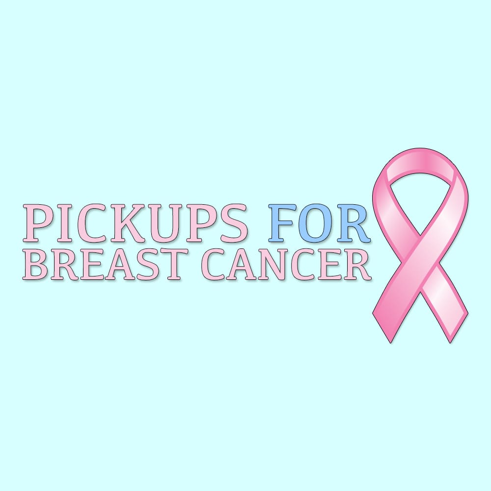 florida breast cancer foundation community service non profit