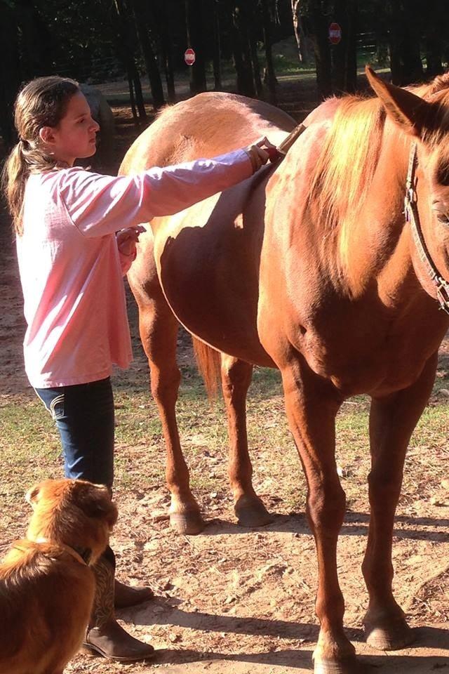 Cannon Equine Instruction: 115 Johnson Ln, Roebuck, SC
