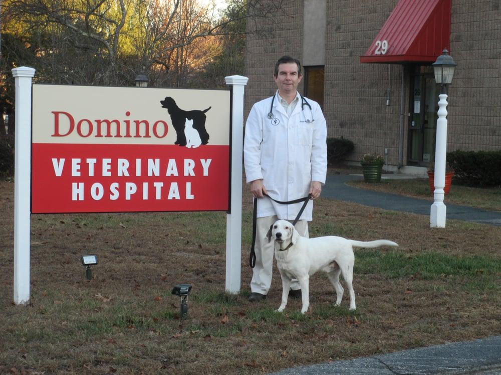 Domino Veterinary Hospital