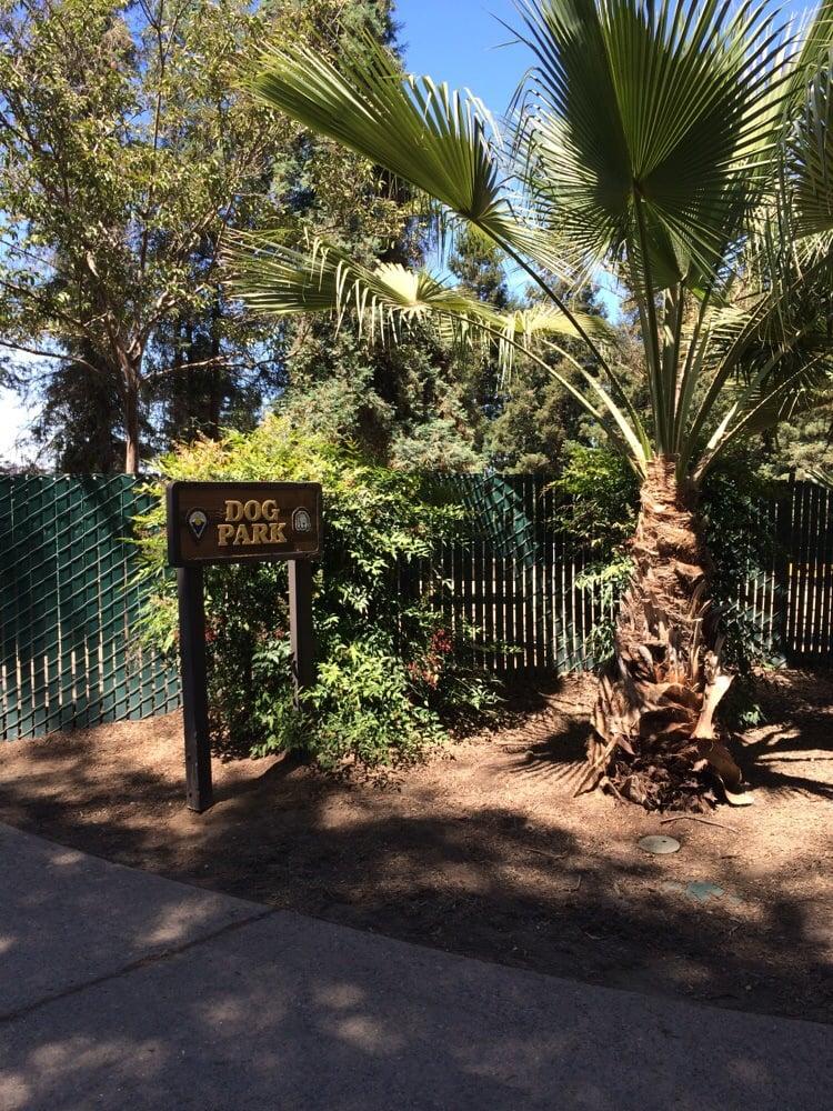 Las Palmas Dog Park Sunnyvale Ca