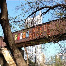 special bridge phone number