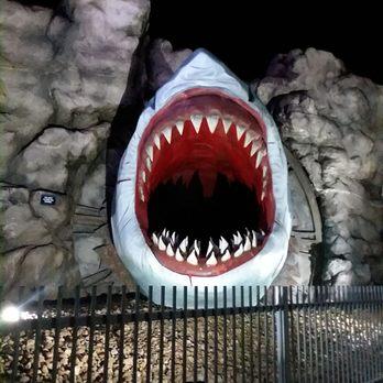 Shark Attack 5d Theater - 17 Reviews - Amusement Parks