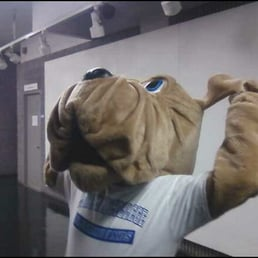 John jay college of criminal justice mascot