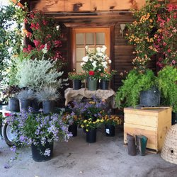 Photo Of Topanga Nursery Chatsworth Ca United States How Does Your Garden