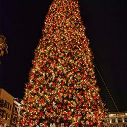Photo of Victoru0027s Custom Christmas Trees - San Juan Capistrano CA United States.  sc 1 st  Yelp & Victoru0027s Custom Christmas Trees - 10 Photos - Christmas Trees ... azcodes.com
